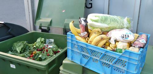 Perfectly good food thrown away in rubbish bins.