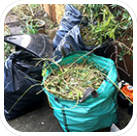 Pile of green waste