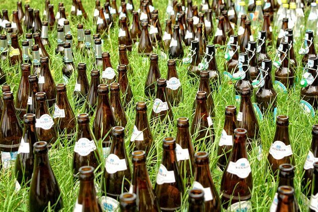 Bottles of beer in the grass.